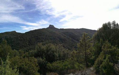 The Forest of Montes and the peak of Monte Novo San Giovanni