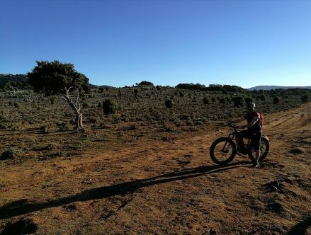 Itinerario MTB Sardegna: Supramonte, su Campu de su Mudrecu